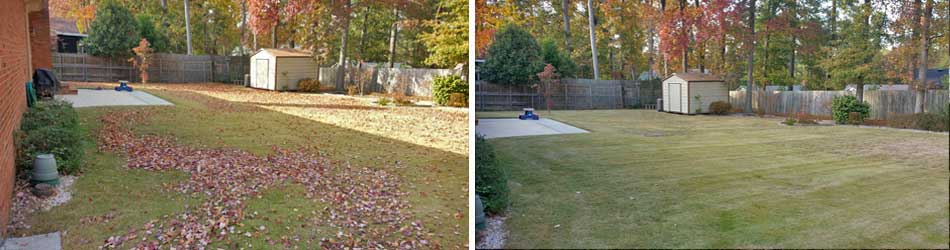 Before and after photos of a yard cleanup service at a home in Evans.