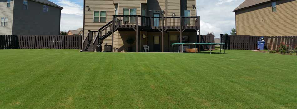 Back yard at a home in Martinez, GA that has been professionally mowed by QuickCall Services.